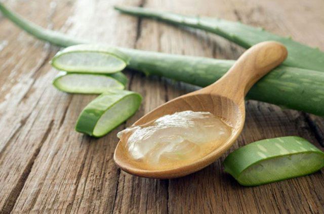 Beauté : 10 façons d'utiliser l'Aloe vera