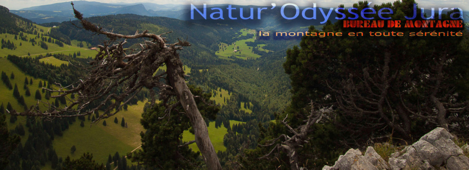 Natur'Odyssée Jura Paysage