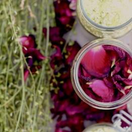 Cueillette de fleurs pour macérats