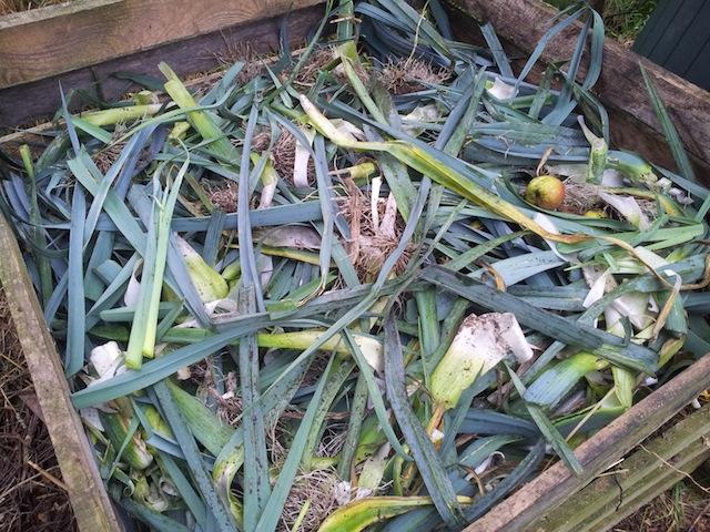 Déchets verts sur le compost
