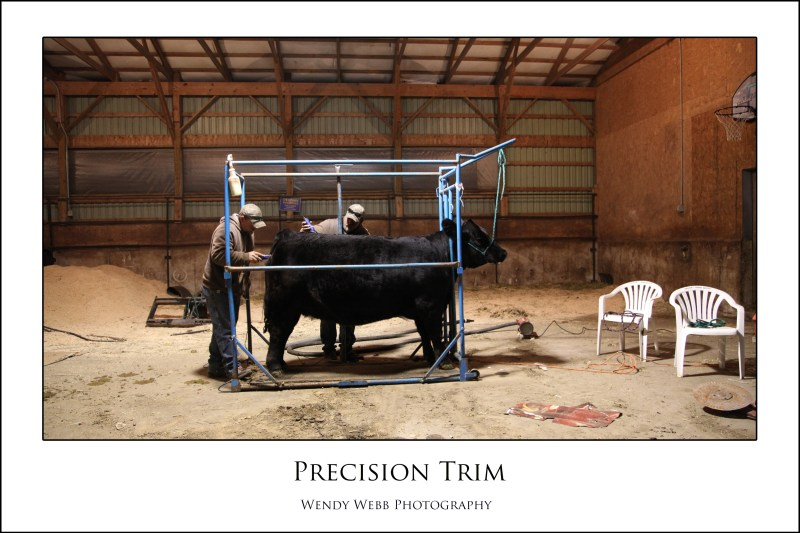 precision trim