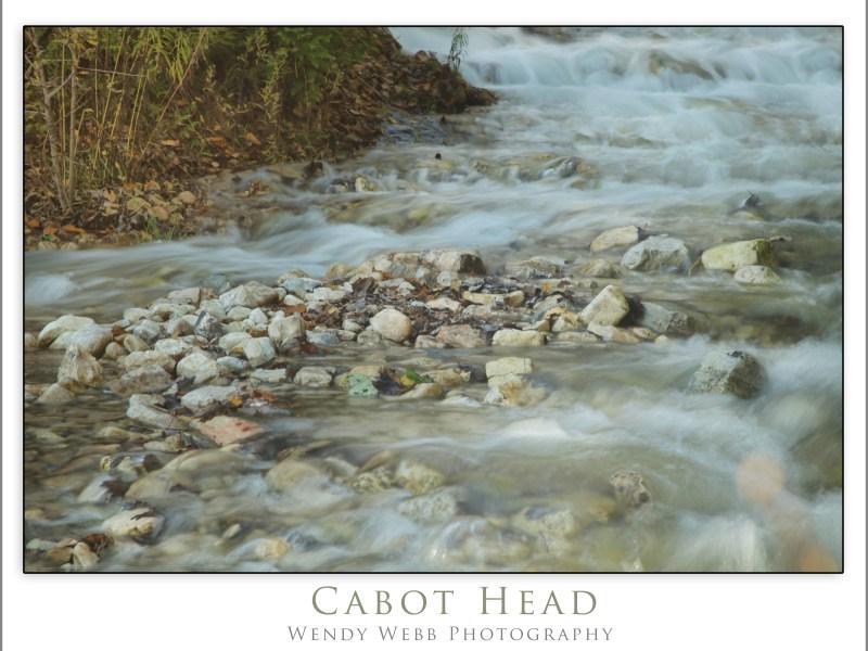 Cabot Head