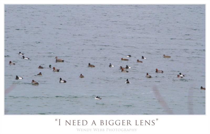 i need a bigger lens