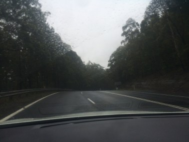 Driving through National Parks in the rain