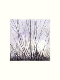 branches-copyright-marlene-vitek