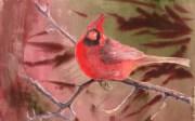 Proud Bird, copyright 3-4-17 Fran Kelly