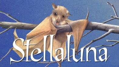 """Bats: Fly By Night""- South Beloit Library StoryClub Program with Severson Dells @ Nature At The Confluence Campus"