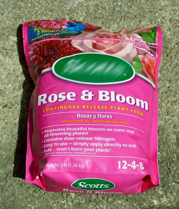 rose-fertilize2