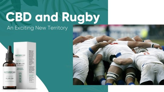 cbd and rugby