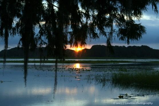 Morning Lake Logo