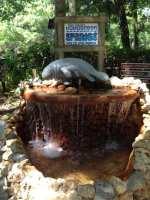 Ellie Schiller Homosassa Springs Wildlife State Park