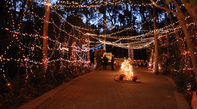Christmas Celebration of Lights at the Wildlife Park 12/17-24 and 26