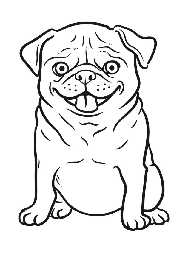 Printable A Funny Pug coloring page for both aldults and kids.