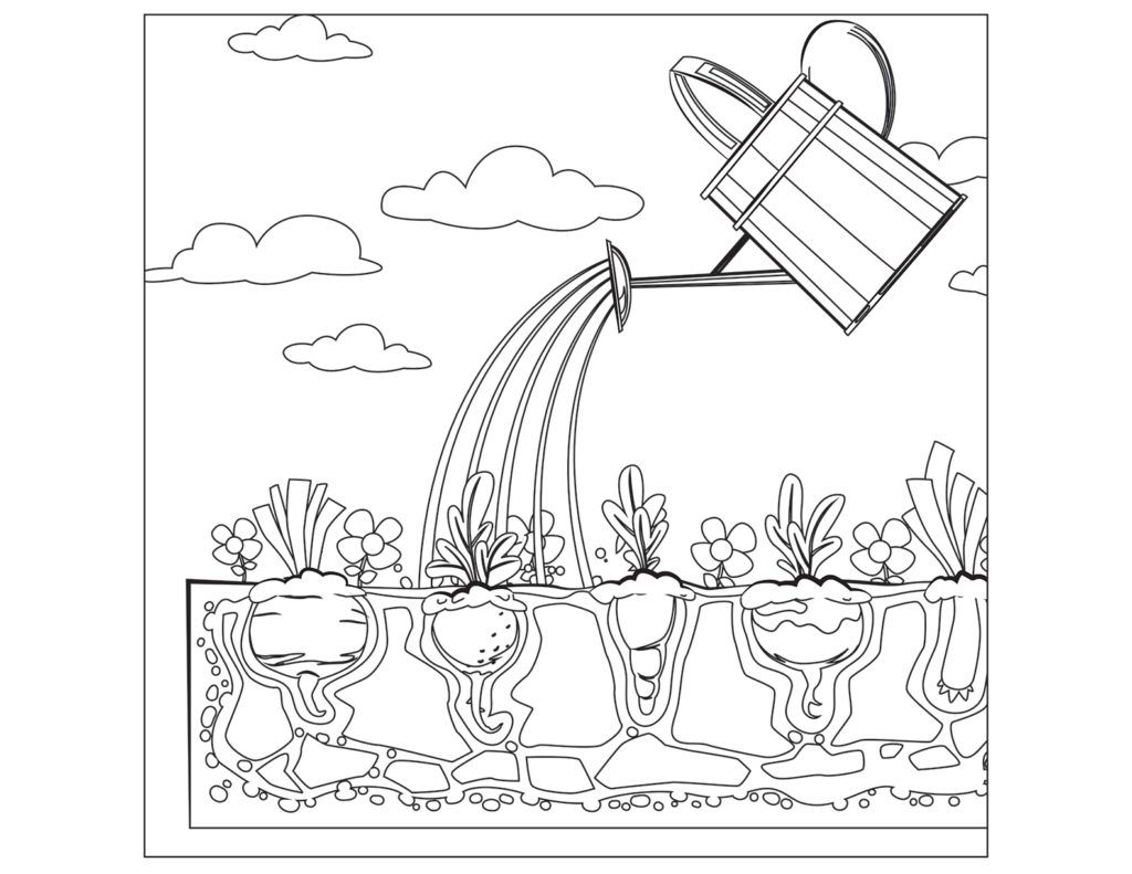 Printable Watering For Vegetables Coloring Page For Both