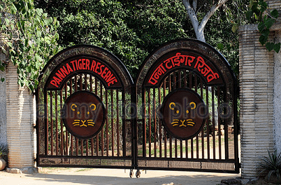 Panna National Park complete detail – updated