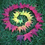 maple-leaf-spiral-land-art-nature-craft