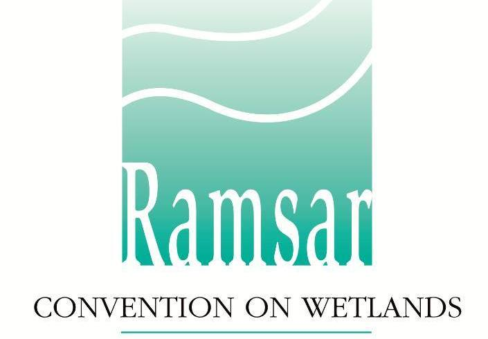 Fiji's NGO focal point for the Ramsar Convention on Wetlands CEPA