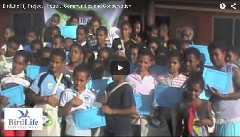 Petrels, Communities and Conservation ~ Birdlife International