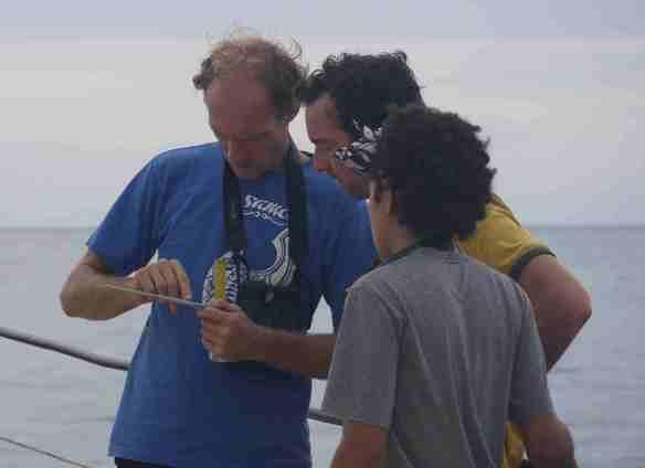 10 Days of Seabird Documentation in Yasayasa Moala