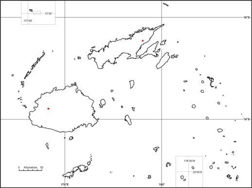 Yanita (Pterocymbium oceanicum)
