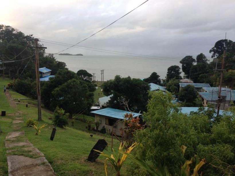 Viwa village Iguanas