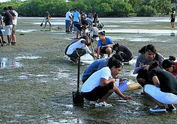 Meet the Creatures of the Mudflats with Monal – 19 August 2017