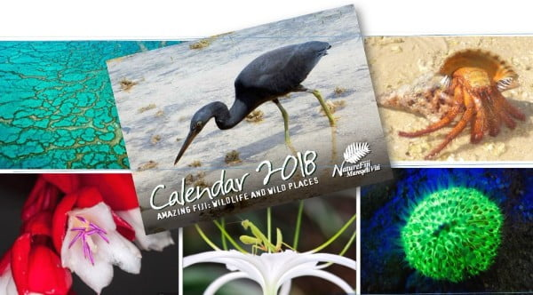 Call for Photo Submission for 2019 Calendars