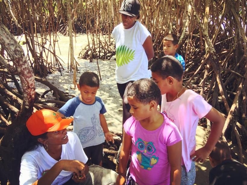 Mangrove Madness: A Different Kind of Easter Hunt