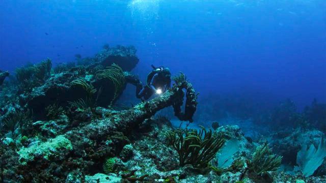 diver at shipwreck