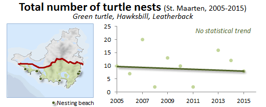 graph about sea turtle nests
