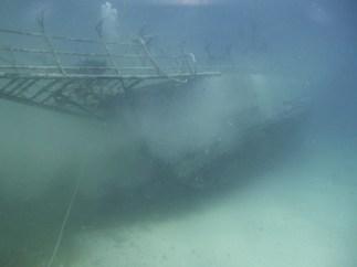 JabJab resting on the surface