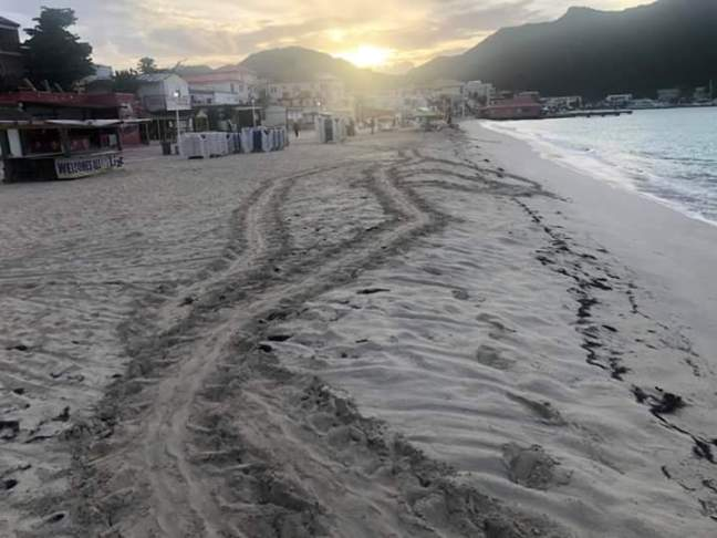 turtle tracks in the sand in Philipsburg