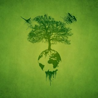 http://img.wallsus.com/download/20140325/tree,-Birds,-planet,-green-1920x1080.jpg