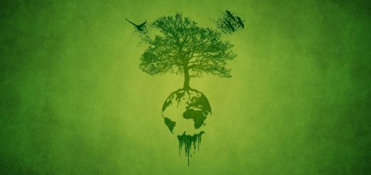 http://img.wallsus.com/download/20140325/tree,-Birds,-planet,-green-1920x1080.jpg