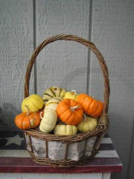 pumpkins basket