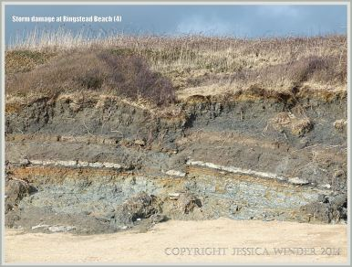 Vertical section through Corallian Jurassic strata at Ringstead Bay