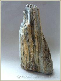 Beach stone made of Cork Group Namurian rock