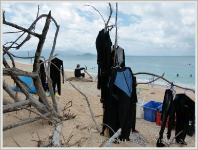 """Stinger"" suits hanging up to dry on Normanby Island beach"