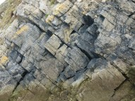 Widening cracks between limestone rock layers in cliff face.