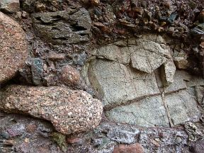 Detail of the composition of Lower Carboniferous Hopewell Cape Formation conglomerate at Hopewell Rocks in New Brunswick