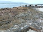 Devonian red sandstone on the shore at Fermoyle