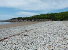 View across a shingle bank and sandy beach towards a pine-topped rocky promontory