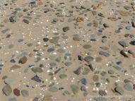 Pebbles, seashells and sand on the beach