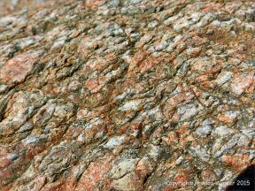 Icart Gneiss rock at Moulin Huet in the Channel Island of Guernsey
