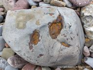 A beach stone with a centre of iron on the Gower Peninsula in South Wales
