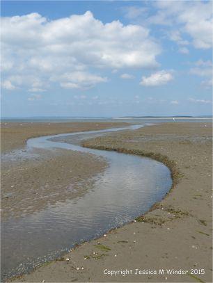 Beach stream cutting through thick layers of marine worm sand tubes (context shot)