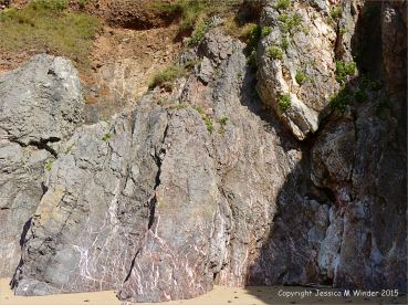 Carboniferous limestone cliff with calcite veins at Threecliff Bay, Gower