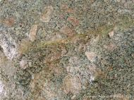 Close-up detail of L'Eree Granite crystals in rock on the Channel Island of Guernsey
