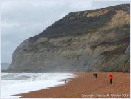 Seatown beach looking west towards Golden Cap in Dorset, England - site of numerous trace fossil burrows of marine invertebrates