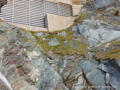 Phyllite rock face below the road on the Cabot Trail in Cape Breton Island